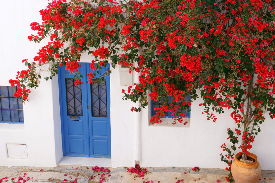 Casas de Níjar - Almería
