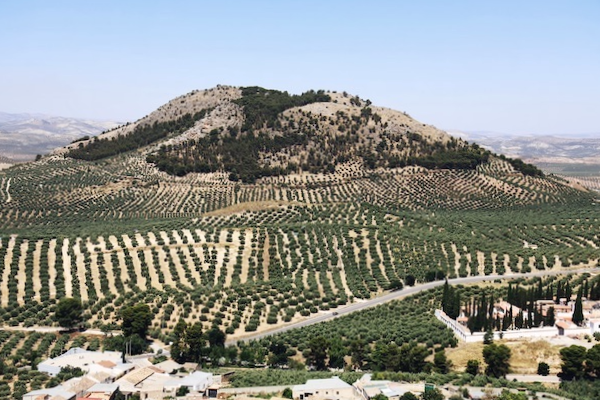 Entorno Alcaudete - Jaén