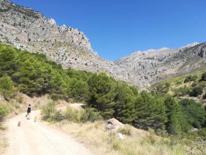 Entorno Bélmez de la Moraleda - Jaén