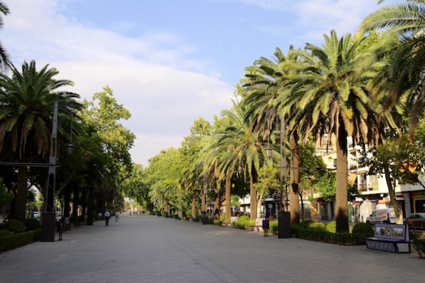 Paseo Virgen de Linarejos Linares - Jaén