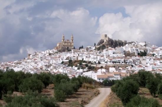 a-white-hill-town-olvera