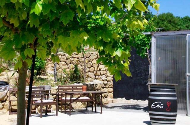 Bodega Etu-Vino en Vejer de la Frontera - Cádiz