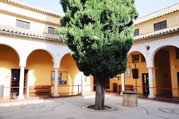 Casa de la Cultura Osuna - Sevilla