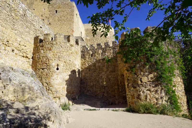 castillo muela
