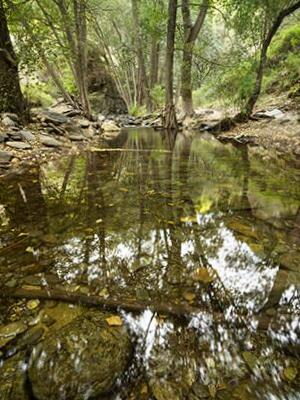Entorno Natural de Laujar de Andarax - Almería
