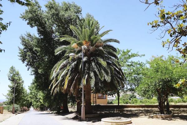 Parque Alcaudete - Jaén