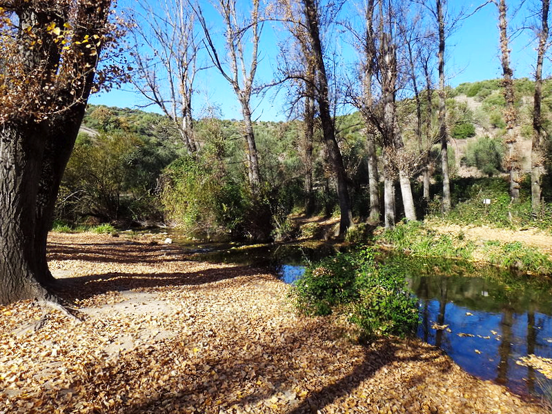 El Bosque - Cádiz