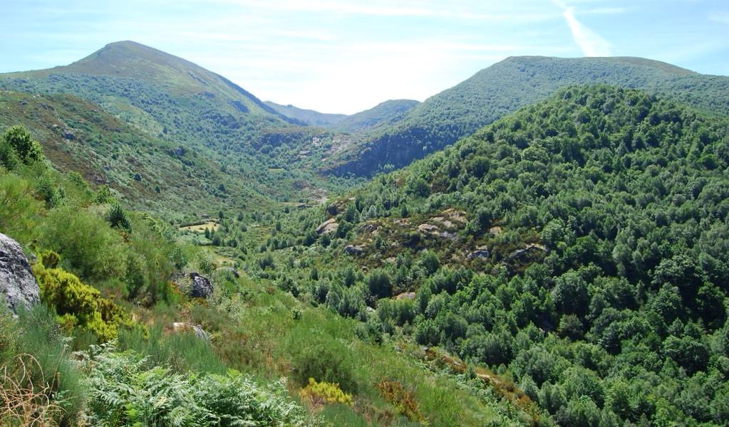 Sierra de Ancares Piornedo - Lugo
