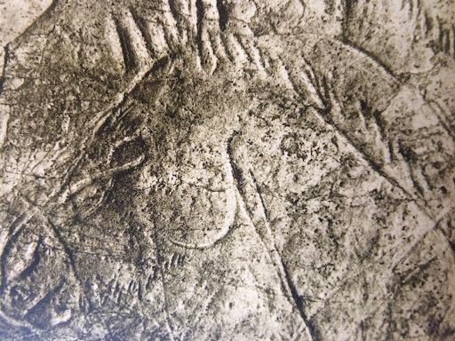riba de saelices