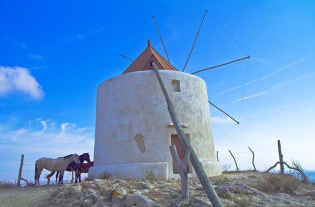 Molino Vejer de la Frontera - Cádiz