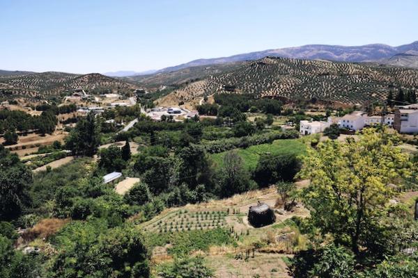 Vistas desde el Balcón del Adarve - Priego de Córdoba